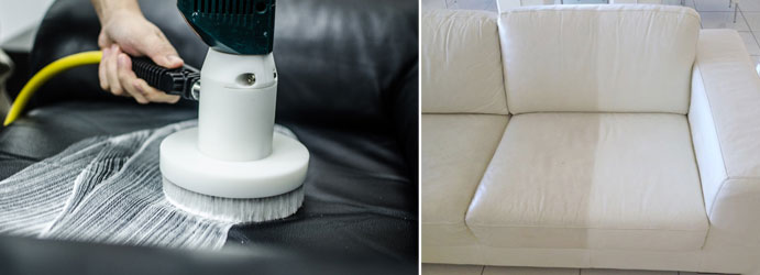 Leather Couch Cleaner